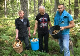 grzybobranie-baranow-sandomierski-10